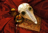 A carefully crafted plague doctor mask, with laser cut eyepieces.